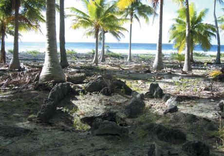© Tahiti Héritage, Tamara MARIC