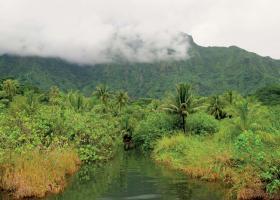 Le mont Toomaru dans les nuages. © Ronan GLOAGUEN
