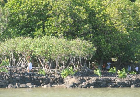 Le marae royal Vaiahu