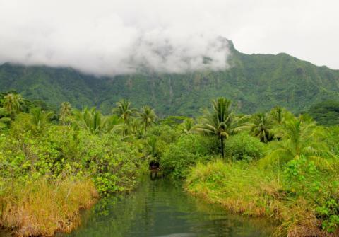 Commune de Tumaraa