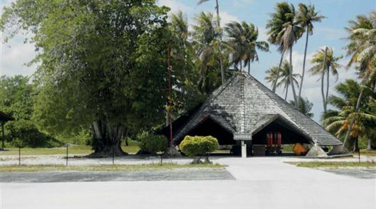 l'arbre Puka. © Commune de Napuka