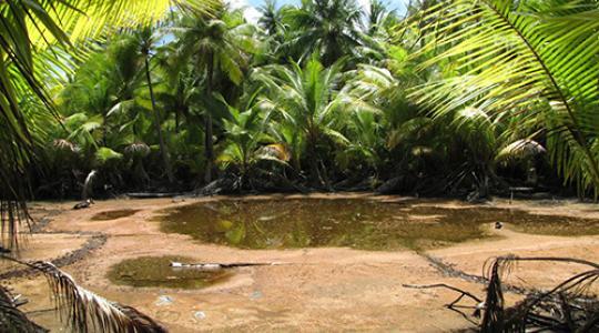 L'étang sacré de Ahe.