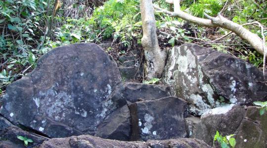 Ofai fanau raa, la pierre pour accoucher