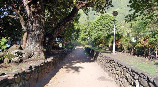 La voie royale de Tamanu - Hapatoni